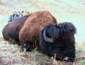 Buffalo2004-4