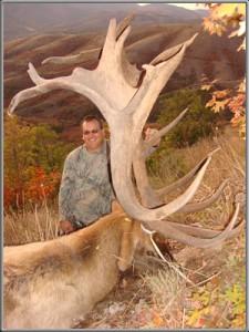 DSC01234-300w-elk[1]