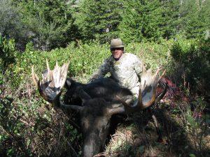 moose4438