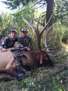 Idaho Elk_1230